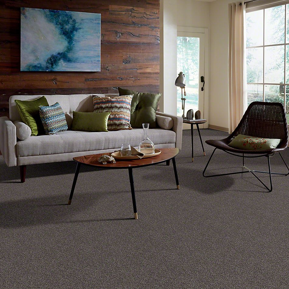 Shaw Floors Value Collections That's Right Net Rich Earth 00715_E0925