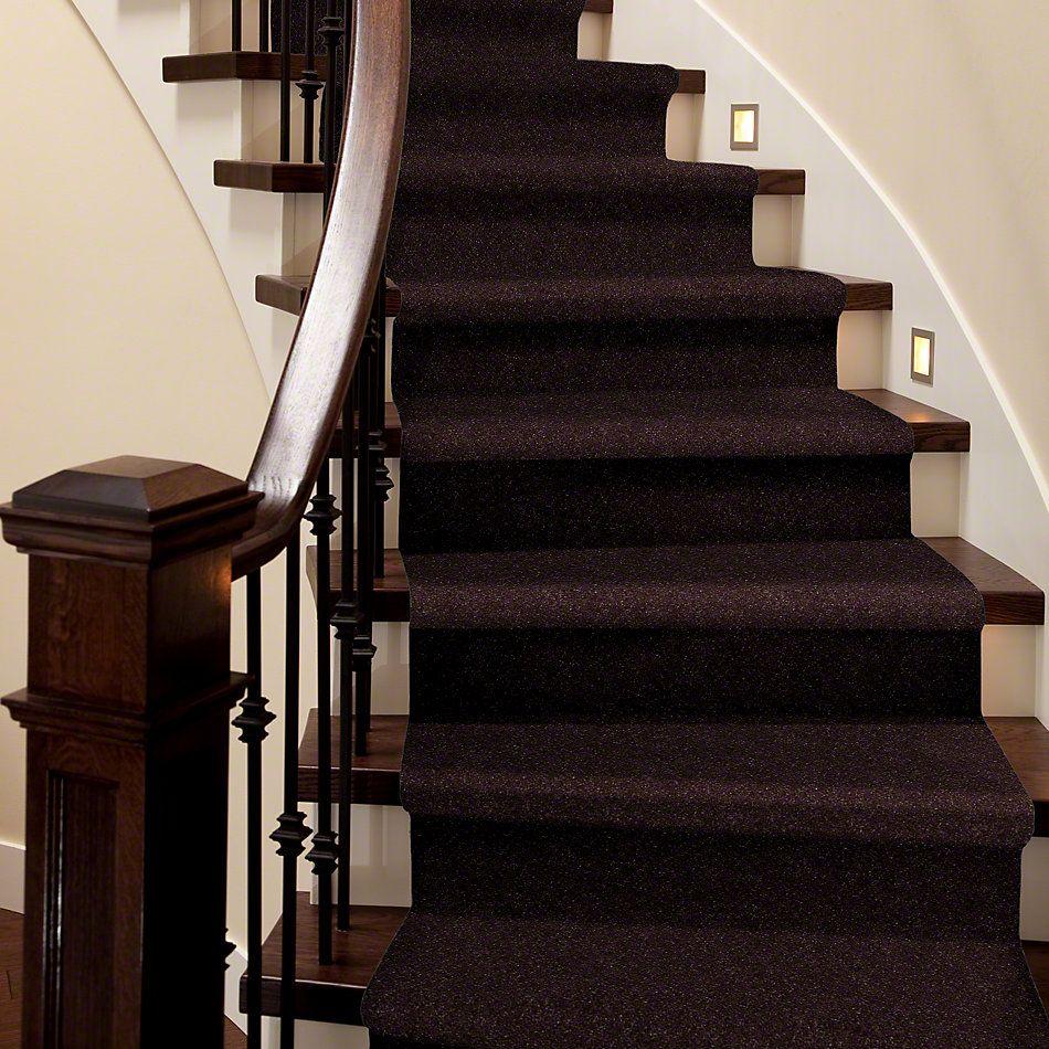 Shaw Floors Secret Escape III 15′ Dark Chocolate 00716_E0053