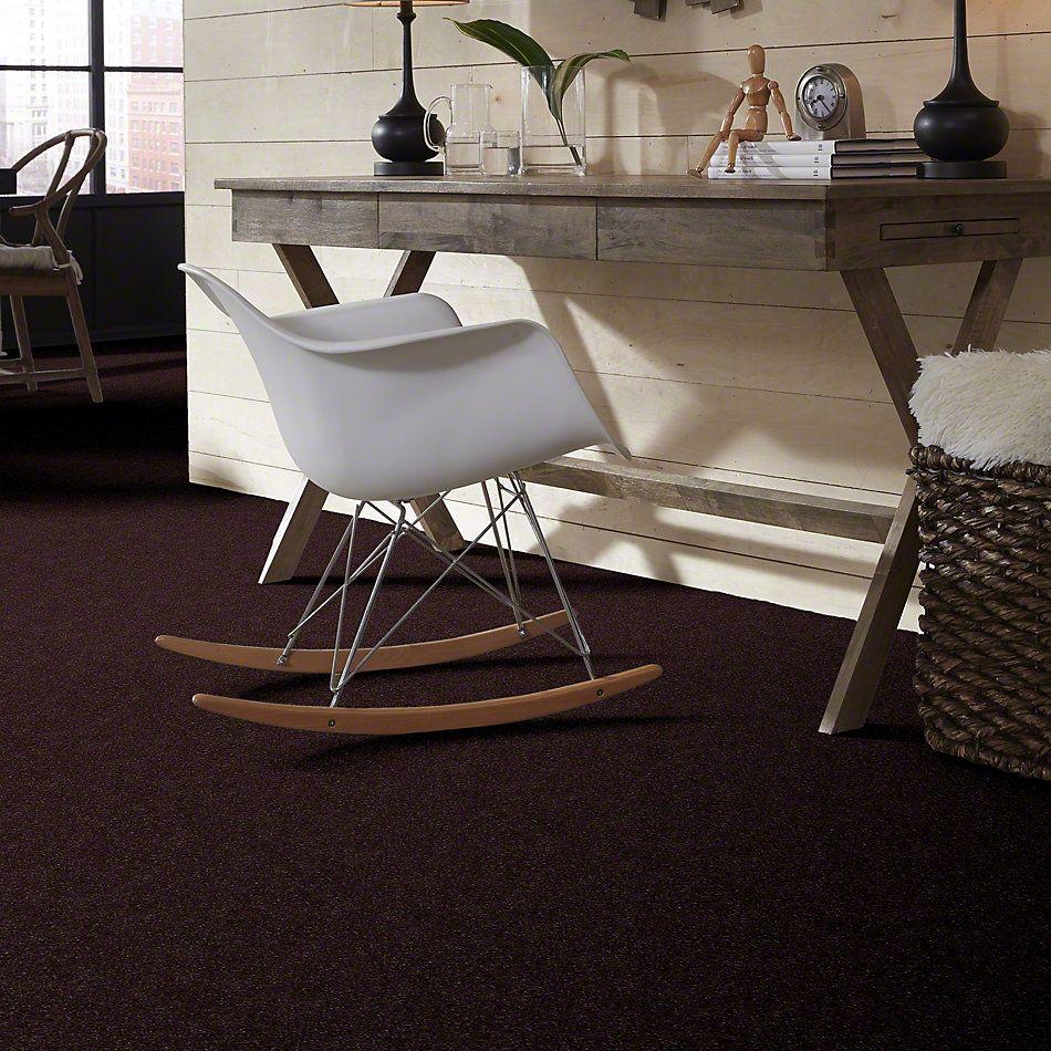 Shaw Floors Roll Special Xv436 Dark Chocolate 00716_XV436