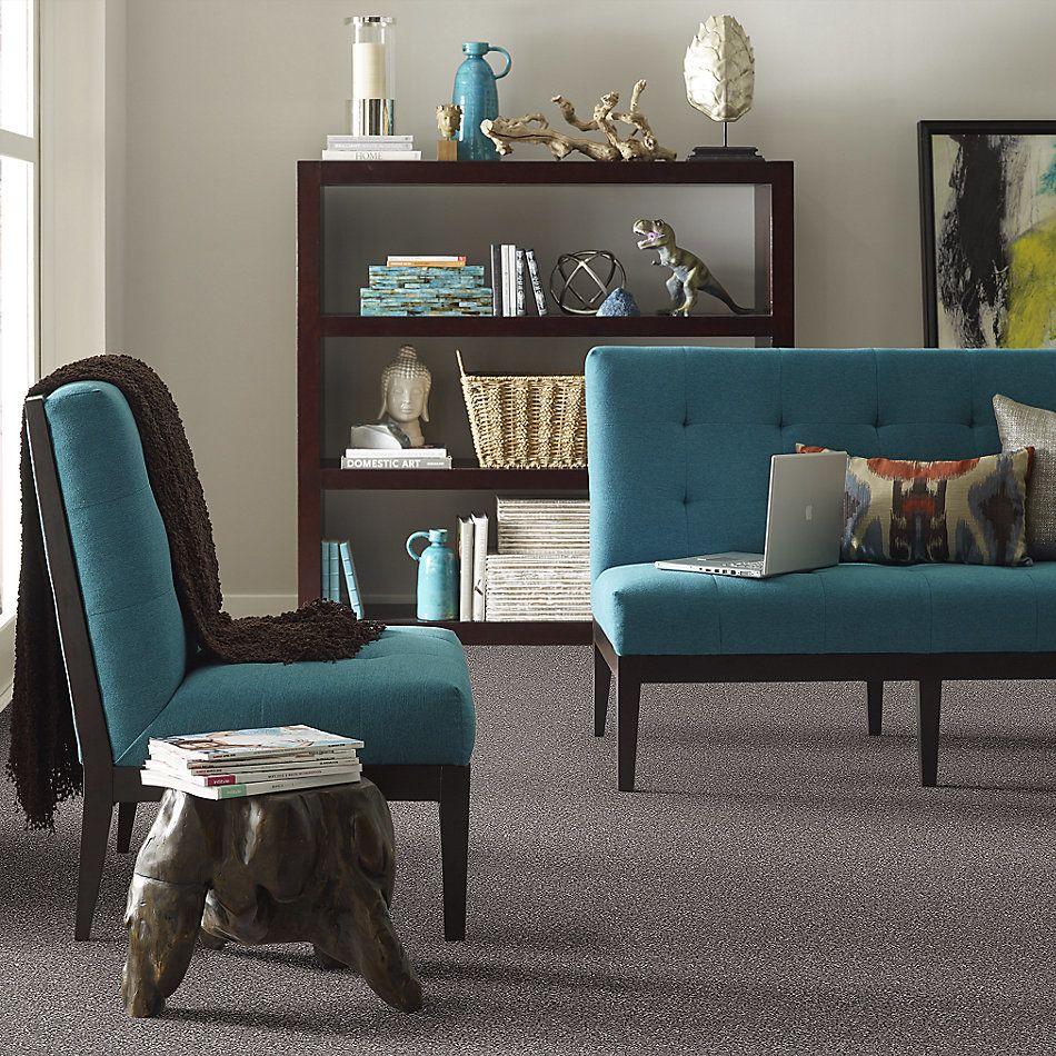 Shaw Floors Roll Special Xv931 Bear Mountain 00716_XV931