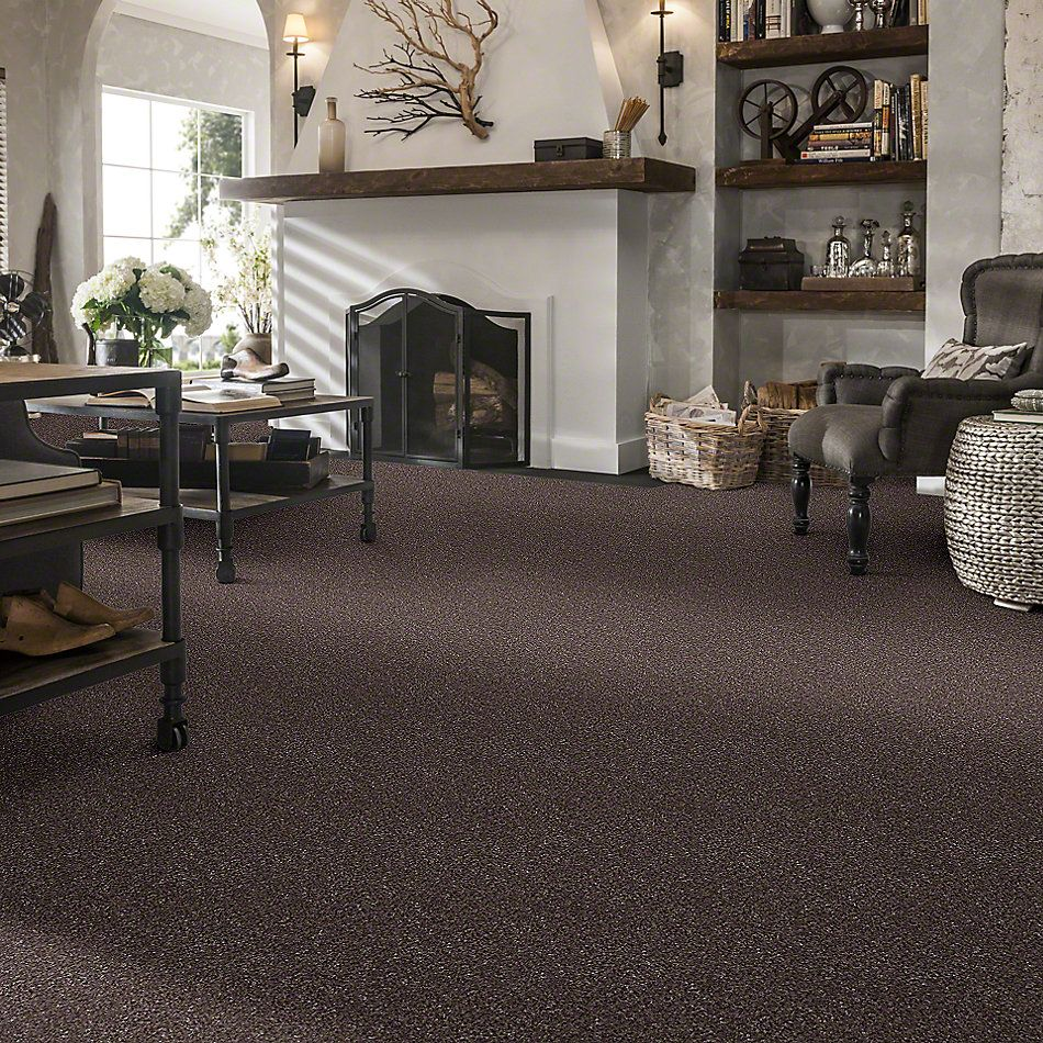 Shaw Floors Value Collections You Know It Net Fudge Ripple 00717_E0927