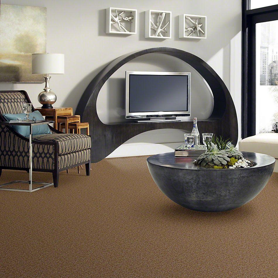 Shaw Floors Anso Premier Dealer Unique Style Worn Saddle 00717_Q2196