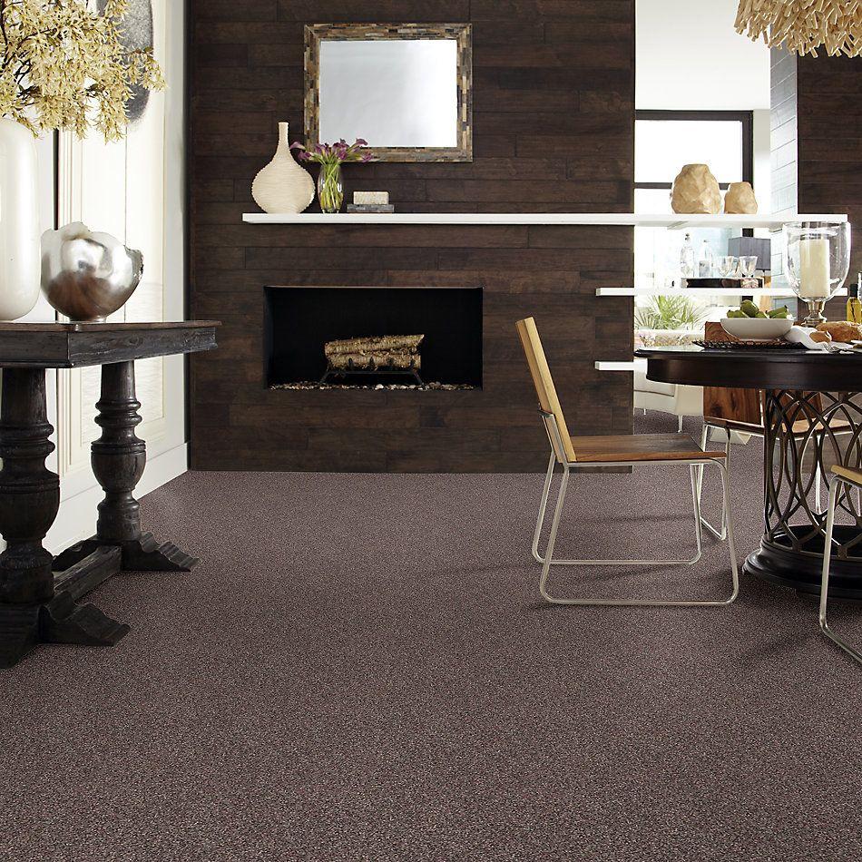 Shaw Floors Roll Special Xv814 Fudge Ripple 00717_XV814