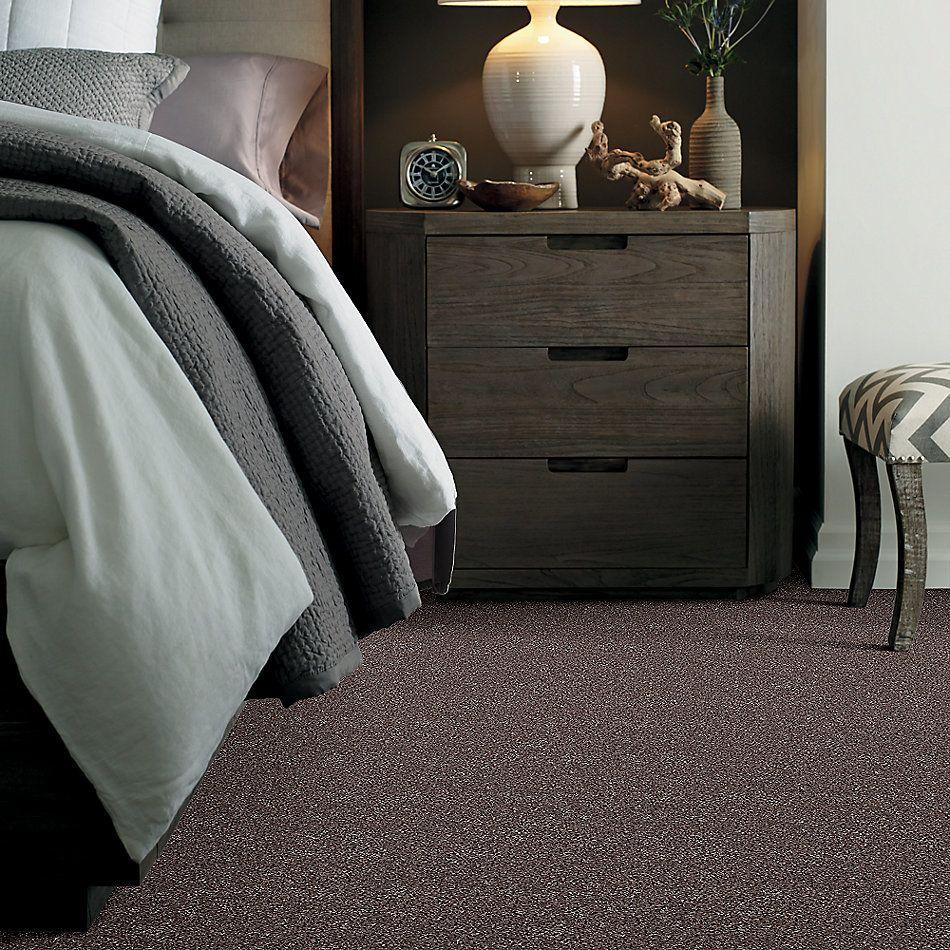 Shaw Floors Roll Special Xv931 Fudge Ripple 00717_XV931