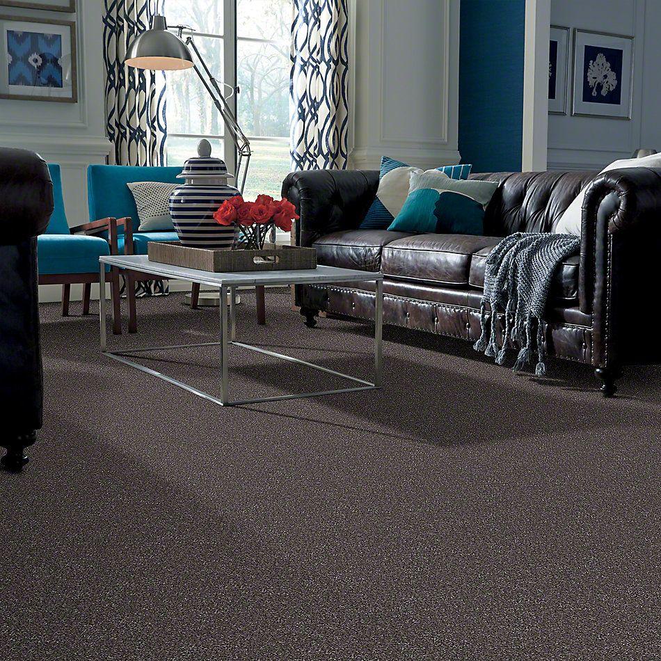 Shaw Floors What's Up Saddle 00718_E0813