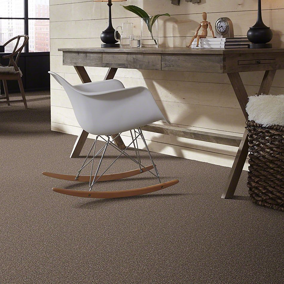 Shaw Floors Value Collections You Know It Net Saddle 00718_E0927