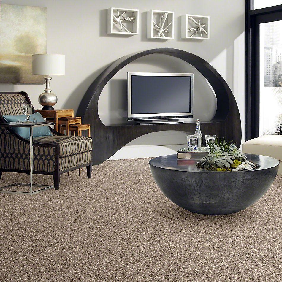 Shaw Floors SFA Awesome 5 (t) Mole Hill 00719_E0744