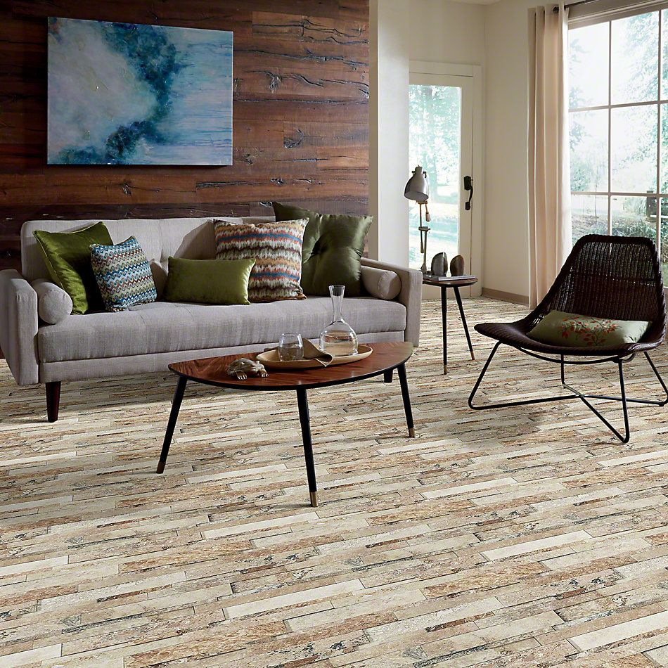 Shaw Floors Ceramic Solutions Milestone Picasso 00720_101TS