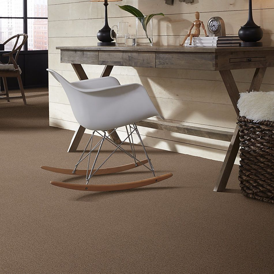 Shaw Floors Value Collections Crafting Design Net Raw Wood 00720_5E377