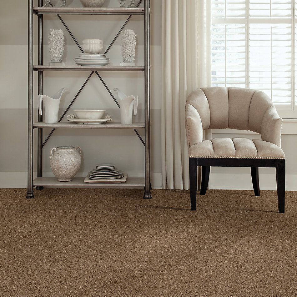 Shaw Floors Foundations Alluring Canvas Raw Wood 00720_5E445
