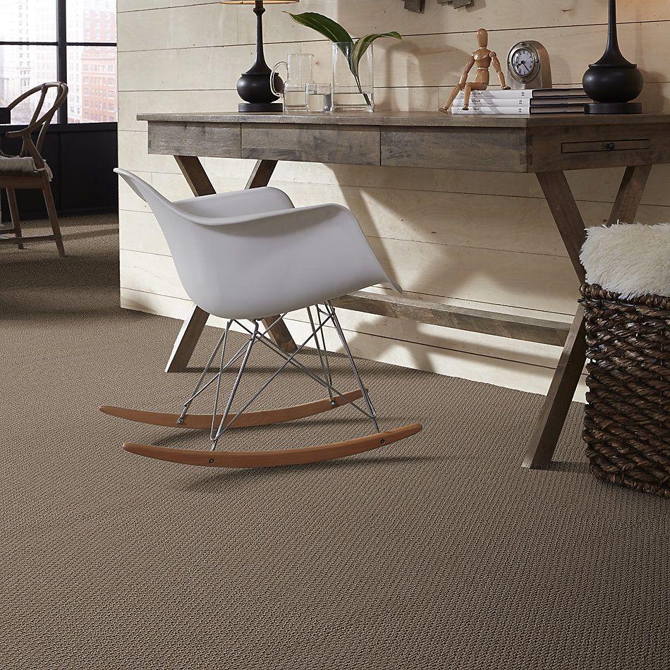 Shaw Floors Foundations Naturalistic Net Raw Wood 00720_5E475