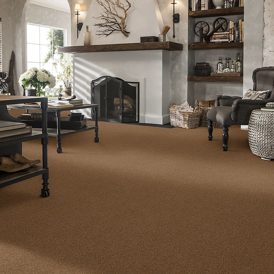 Shaw Floors Value Collections Sandy Hollow Cl III Net Windmill 00720_5E511