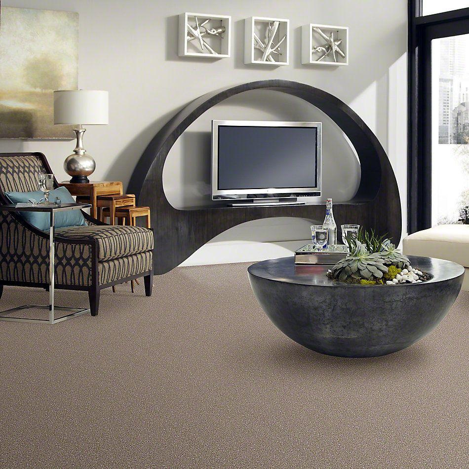 Shaw Floors Go For It Sandstone 00720_E0322