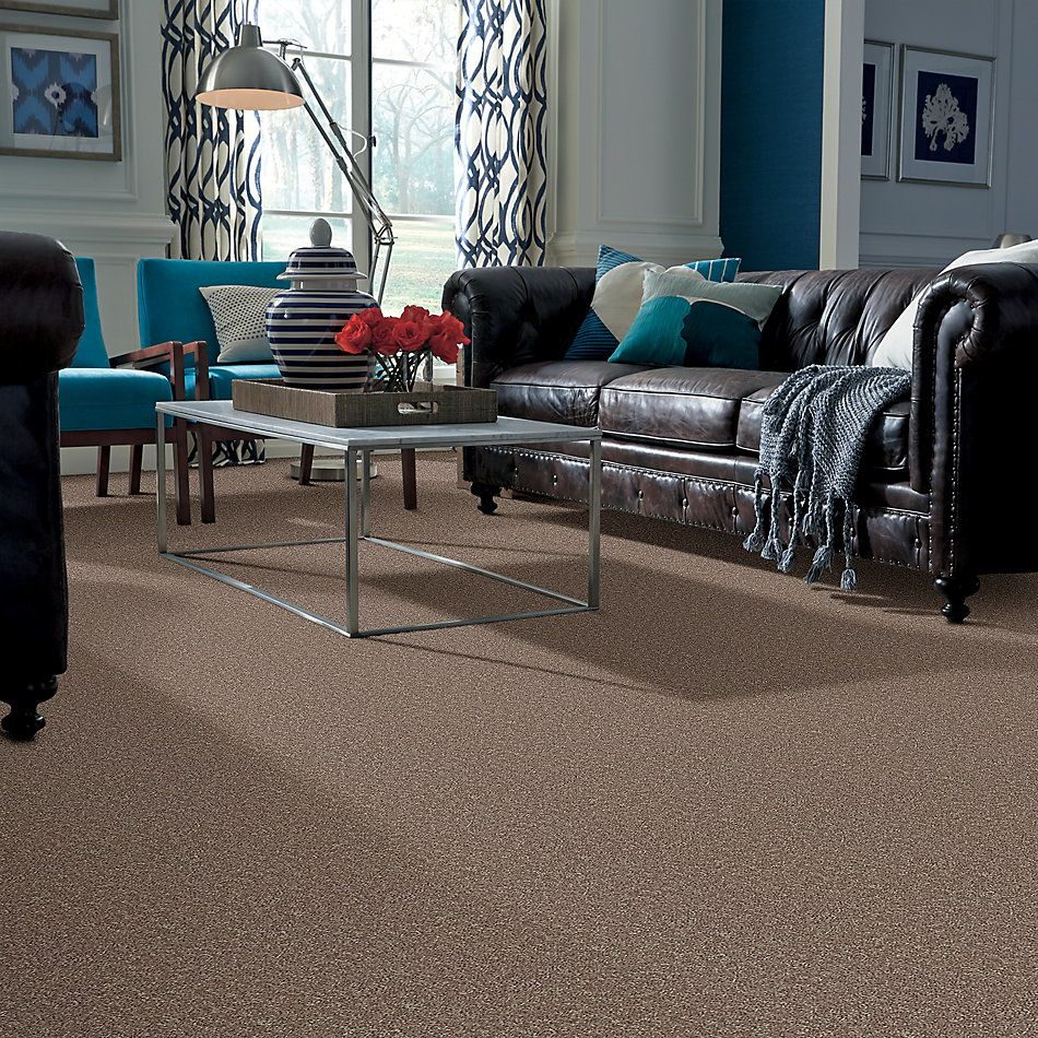 Shaw Floors Value Collections All Star Weekend I 12 Net River Slate 00720_E0792