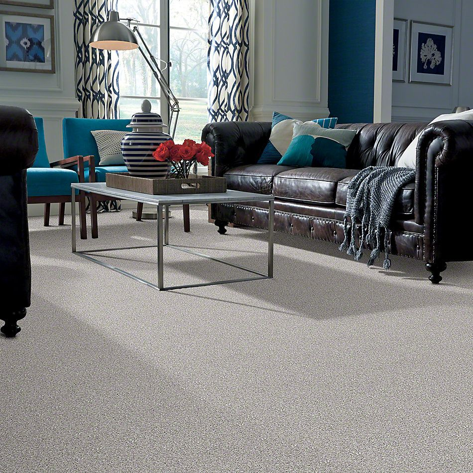 Shaw Floors Value Collections Pay Attention Net Cool Taupe 00720_E0841
