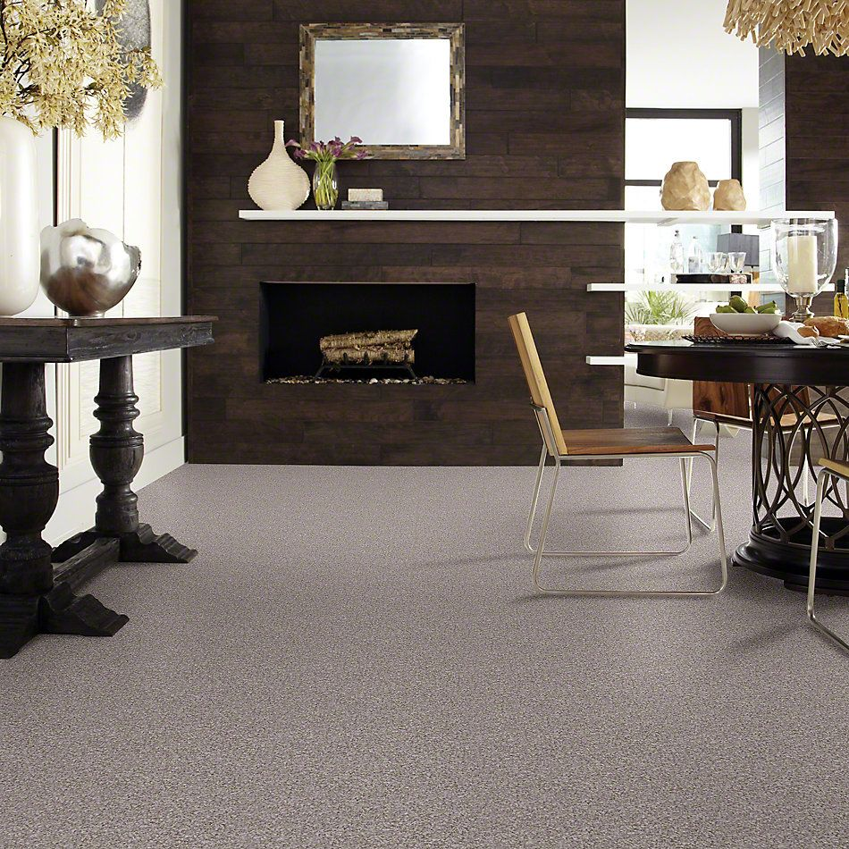 Shaw Floors Value Collections Reflect With Me Net Weathered Wood 00720_E0869