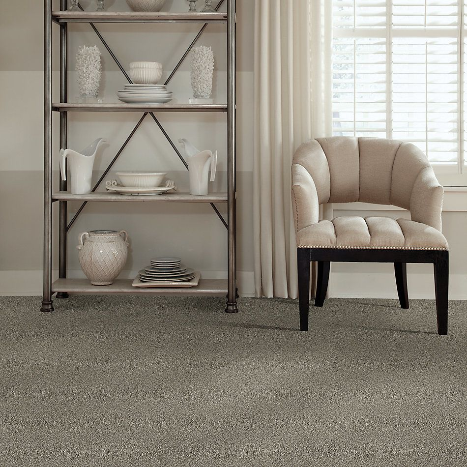 Shaw Floors Value Collections Shake It Up Tonal Net Barely There 00720_E9859