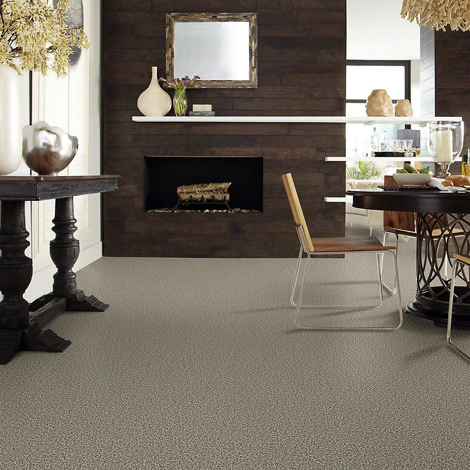 Shaw Floors Foundations Sense Of Reflection Pleasant Valley 00720_EA698
