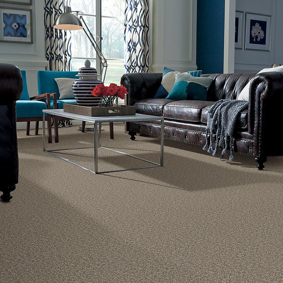Shaw Floors Roll Special Xv866 River Slate 00720_XV866