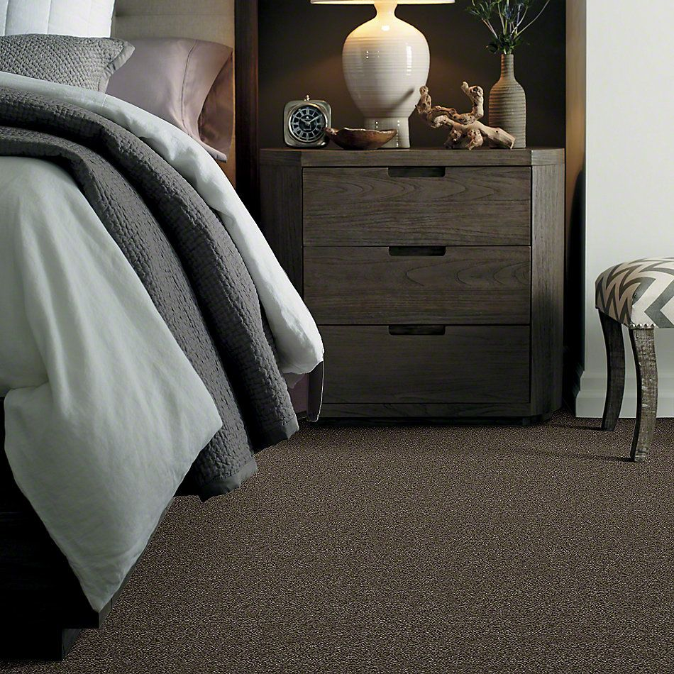 Shaw Floors Shaw Flooring Gallery Mcentire Fairview Taupe 00721_5520G