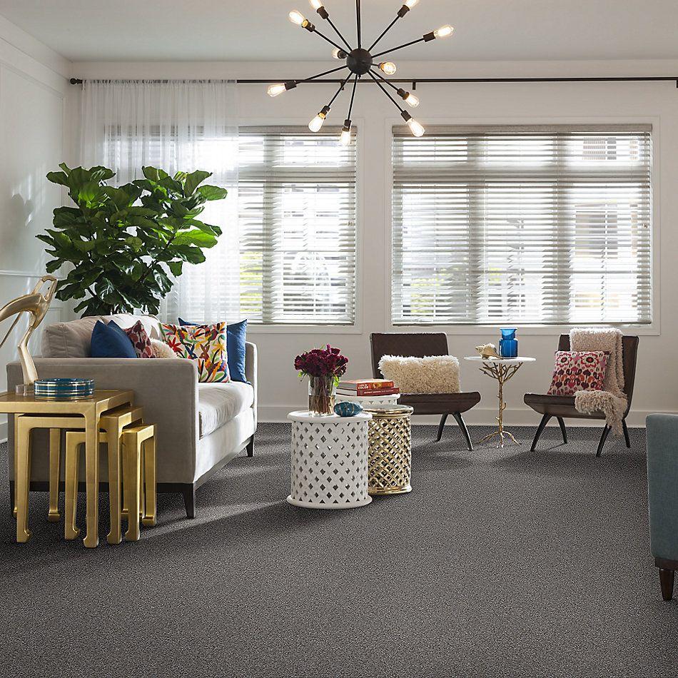 Shaw Floors Value Collections Make It Mine II Net Cedar Ridge 00721_5E332