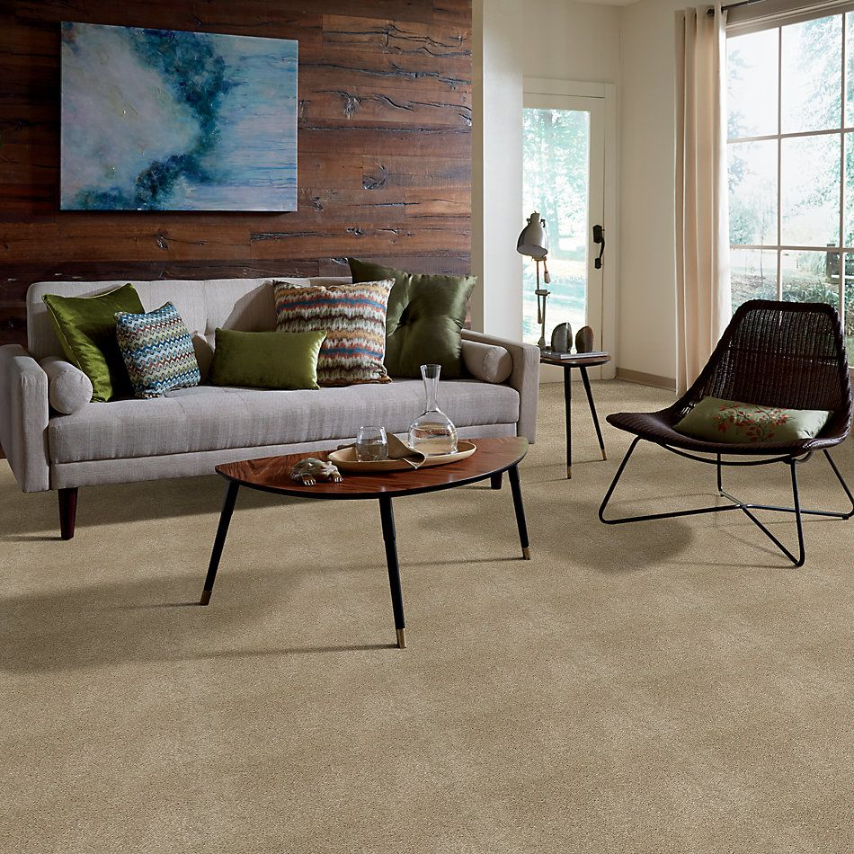 Shaw Floors Caress By Shaw Cashmere I Lg Pecan Bark 00721_CC09B
