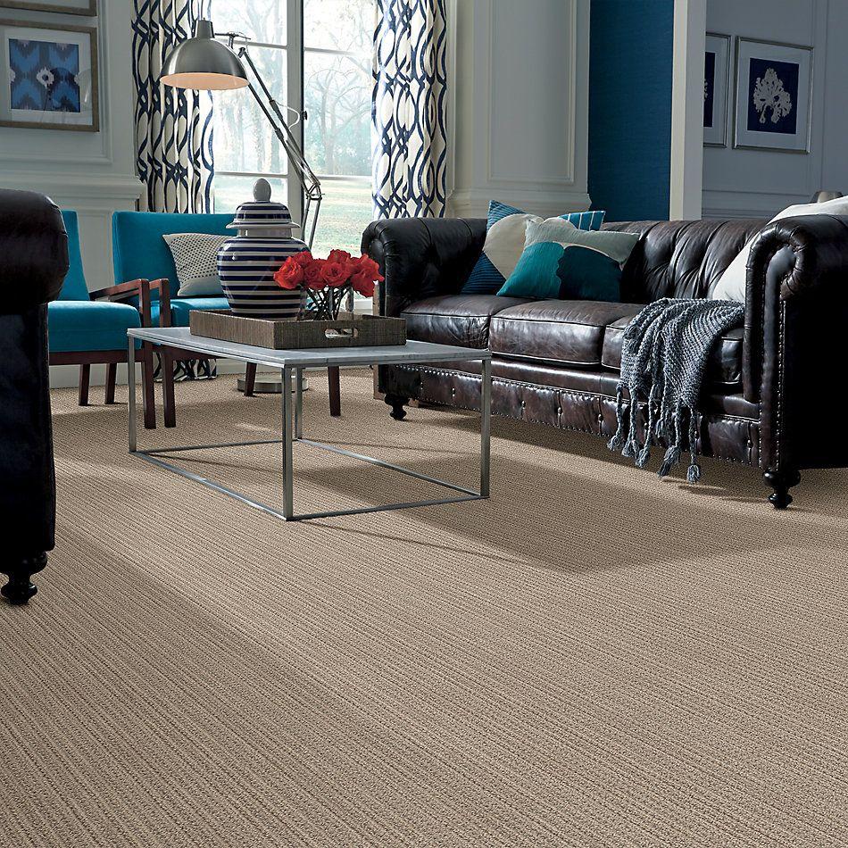 Shaw Floors Caress By Shaw Subtle Aura Natural Beauty 00721_CC84B