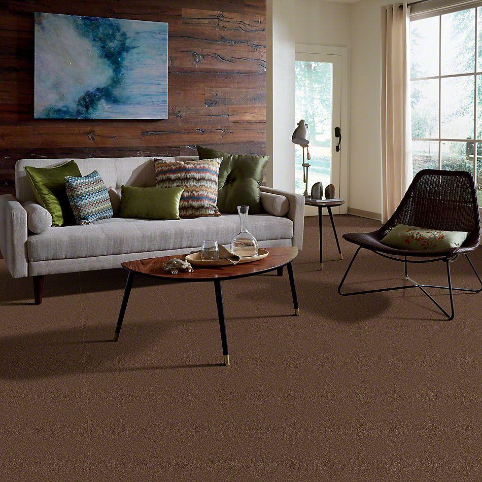 Shaw Floors Foundations Sandy Hollow Classic II 12 Wooden Box 00721_E0550