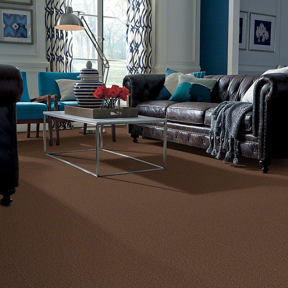Shaw Floors SFA Shingle Creek Iv 15′ Wooden Box 00721_EA519