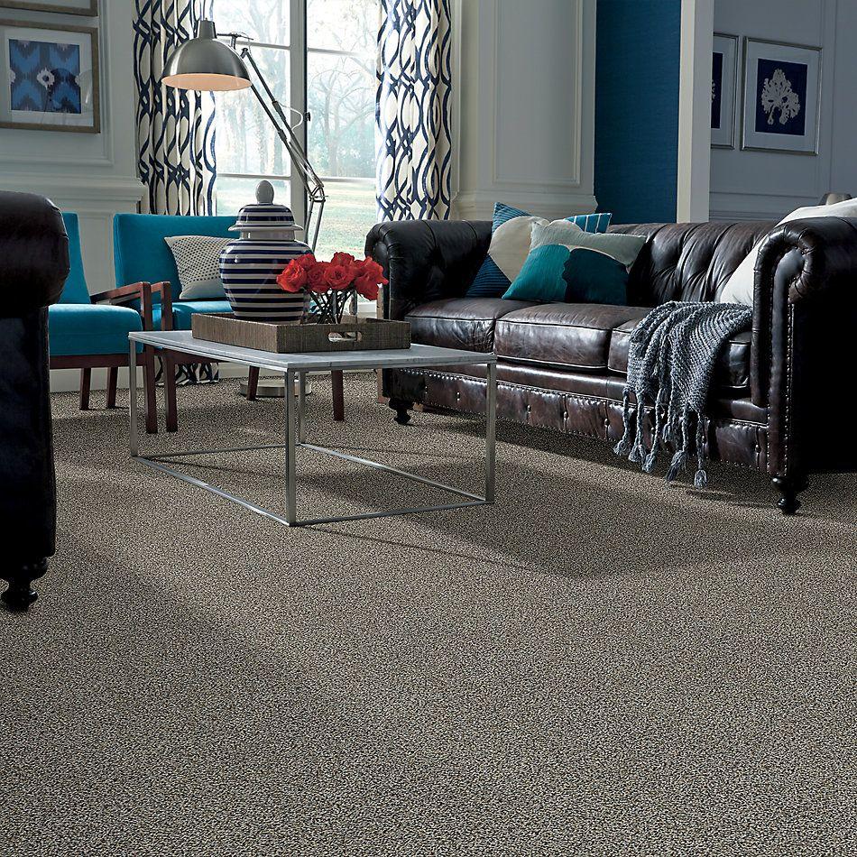 Shaw Floors 300sl 15′ Boho Charm 00721_EA764