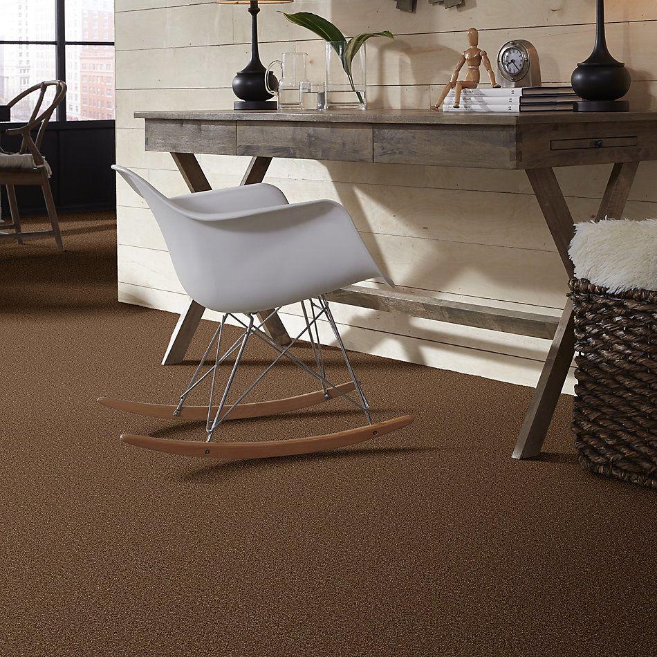 Shaw Floors Roll Special Xv864 Desert Sunrise 00721_XV864