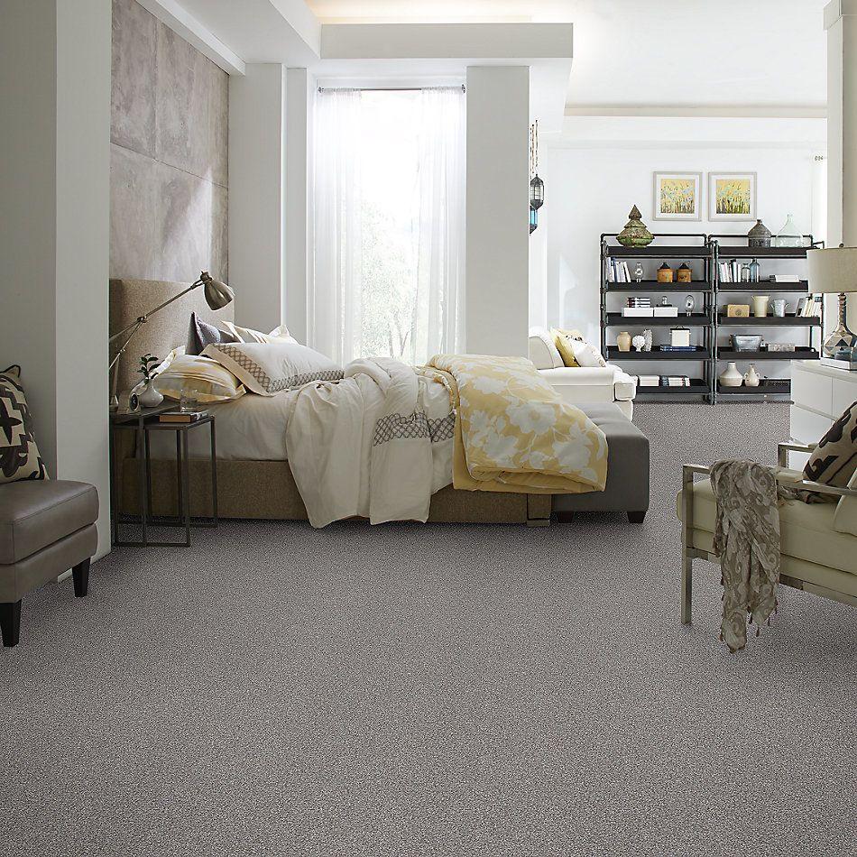 Shaw Floors Value Collections Xz165 Net Cedar Ridge 00721_XZ165