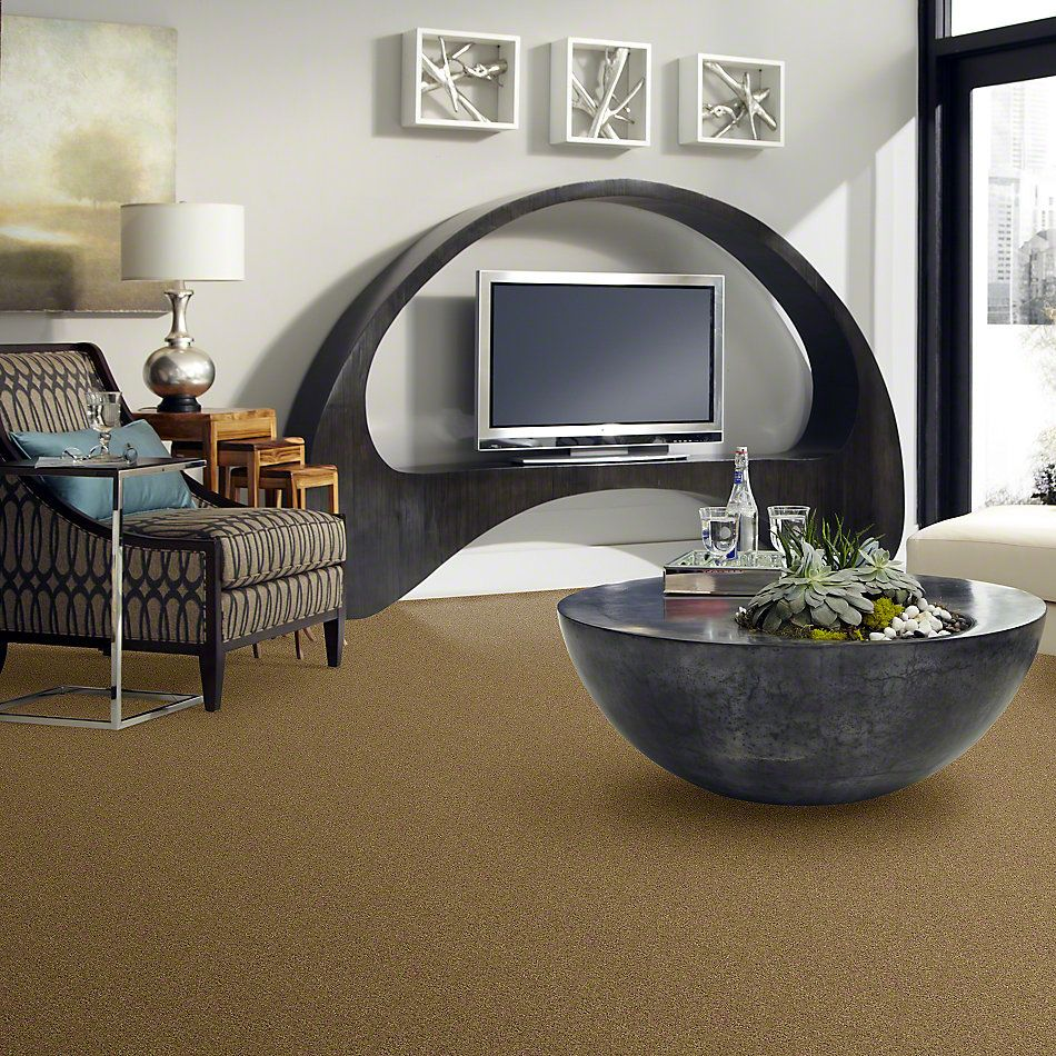 Shaw Floors Shaw Design Center Luxury Bay I Honey Pot 00722_5C669