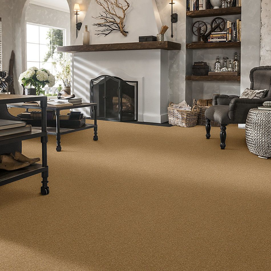 Shaw Floors Value Collections Sandy Hollow Cl III Net Cork 00722_5E511