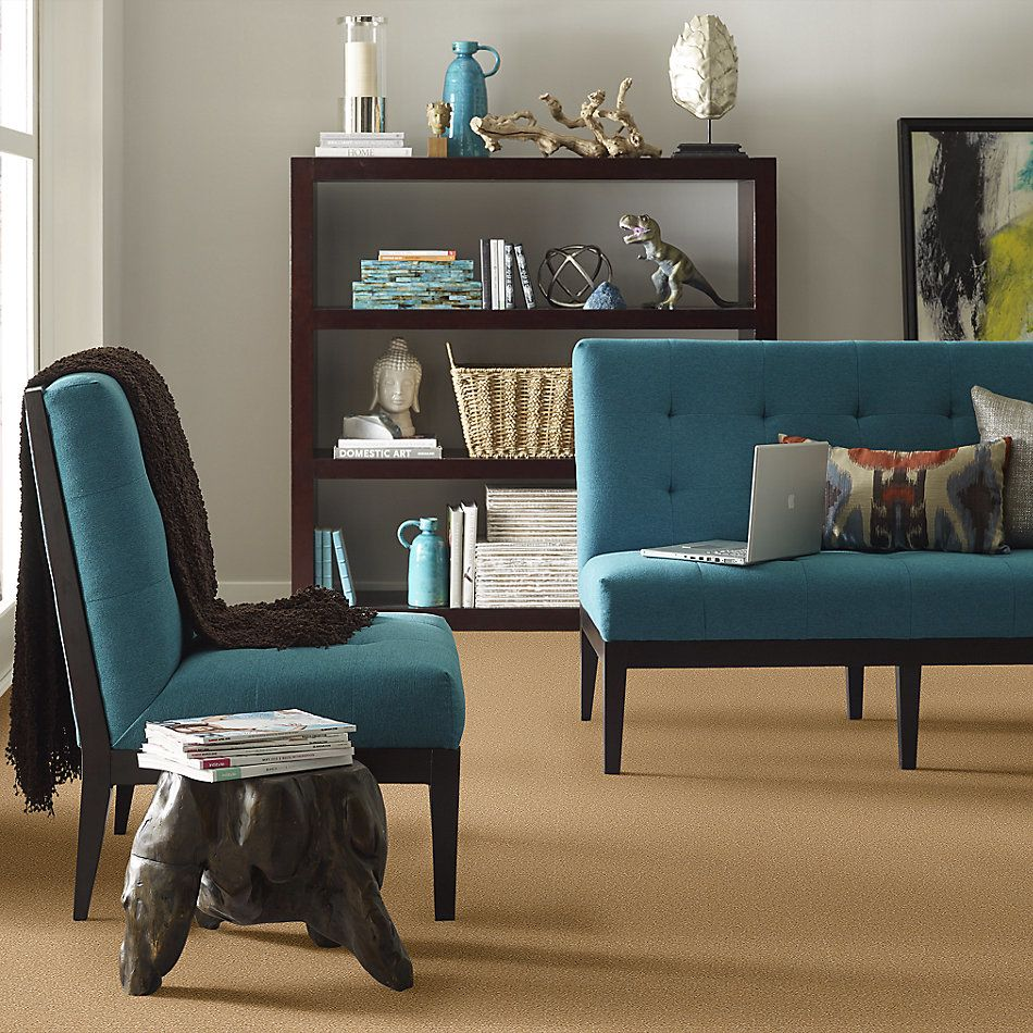 Shaw Floors Value Collections Sandy Hollow Cl Iv Net Cork 00722_5E512