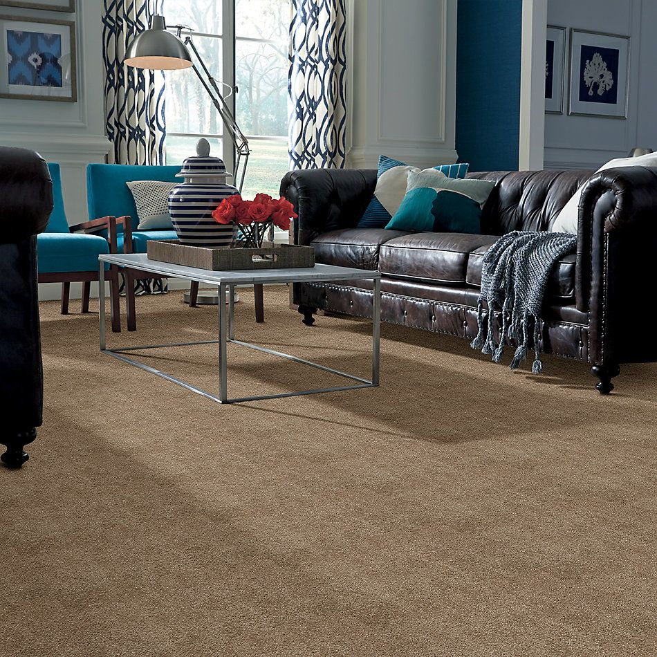 Shaw Floors SFA Cashmere I Lg Pebble Path 00722_CC09B