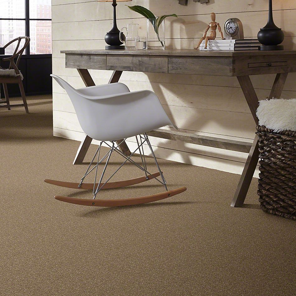 Shaw Floors Caress By Shaw Quiet Comfort Classic I Pebble Path 00722_CCB96