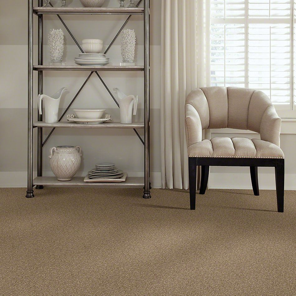 Shaw Floors Caress By Shaw Quiet Comfort Classic III Pebble Path 00722_CCB98