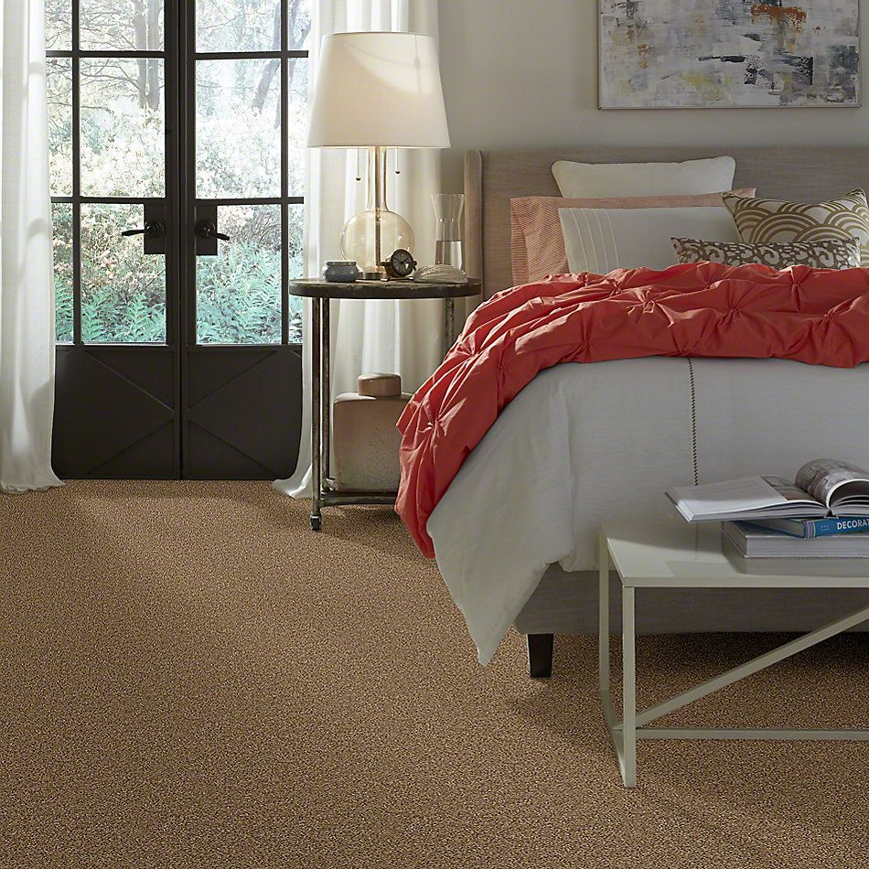Shaw Floors Thunder Struck (s) Northwinds 00722_E0272