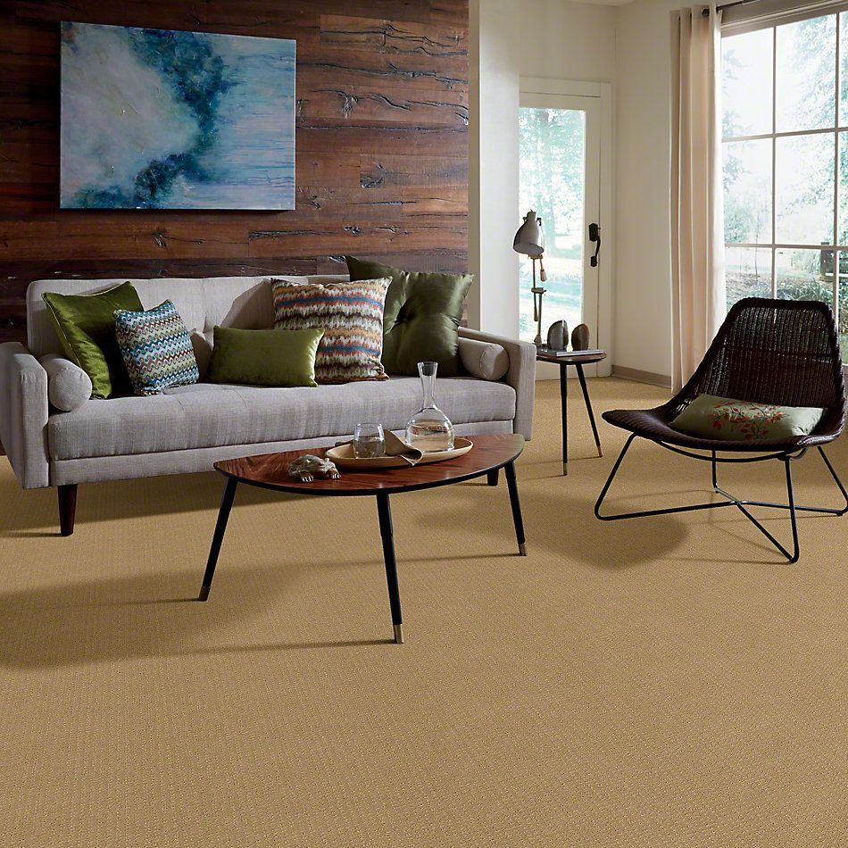 Shaw Floors Enduring Comfort Pattern Honey Pot 00722_E0404