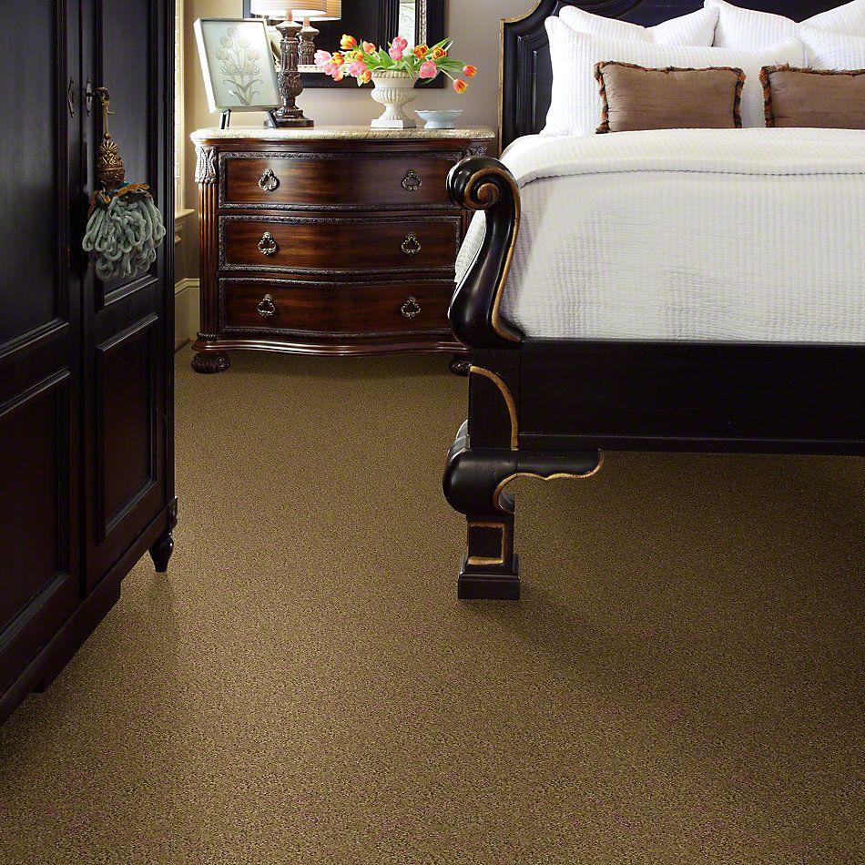 Shaw Floors My Choice II Honey Pot 00722_E0651