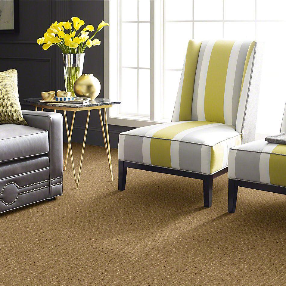 Shaw Floors My Choice Pattern Honey Pot 00722_E0653