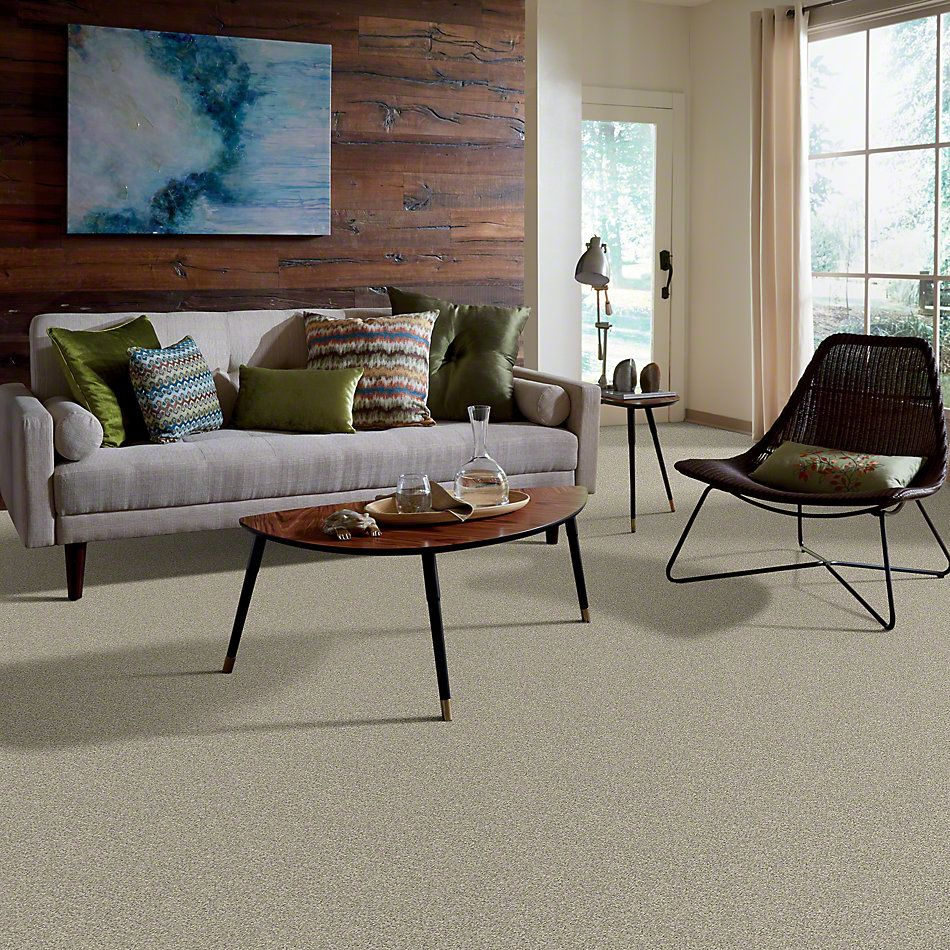 Shaw Floors Anso Colorwall Designer Twist Gold (s) Warm Oatmeal 00722_EA090