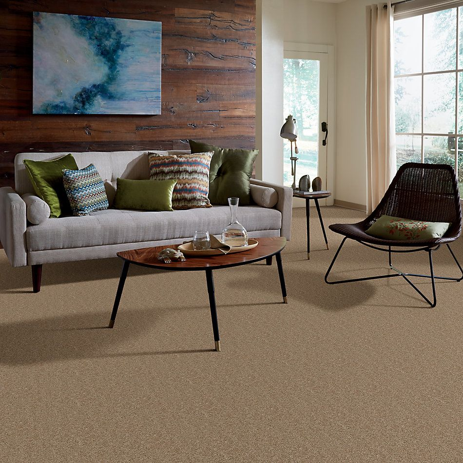 Shaw Floors Nfa/Apg Barracan Classic II Pebble Path 00722_NA075