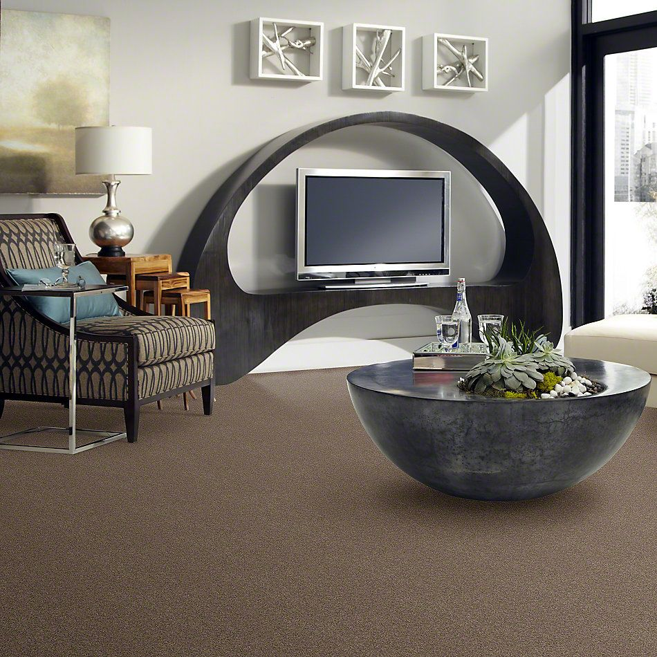 Shaw Floors Anso Colorwall Design Texture Gold Iced Coffee 00723_52T72