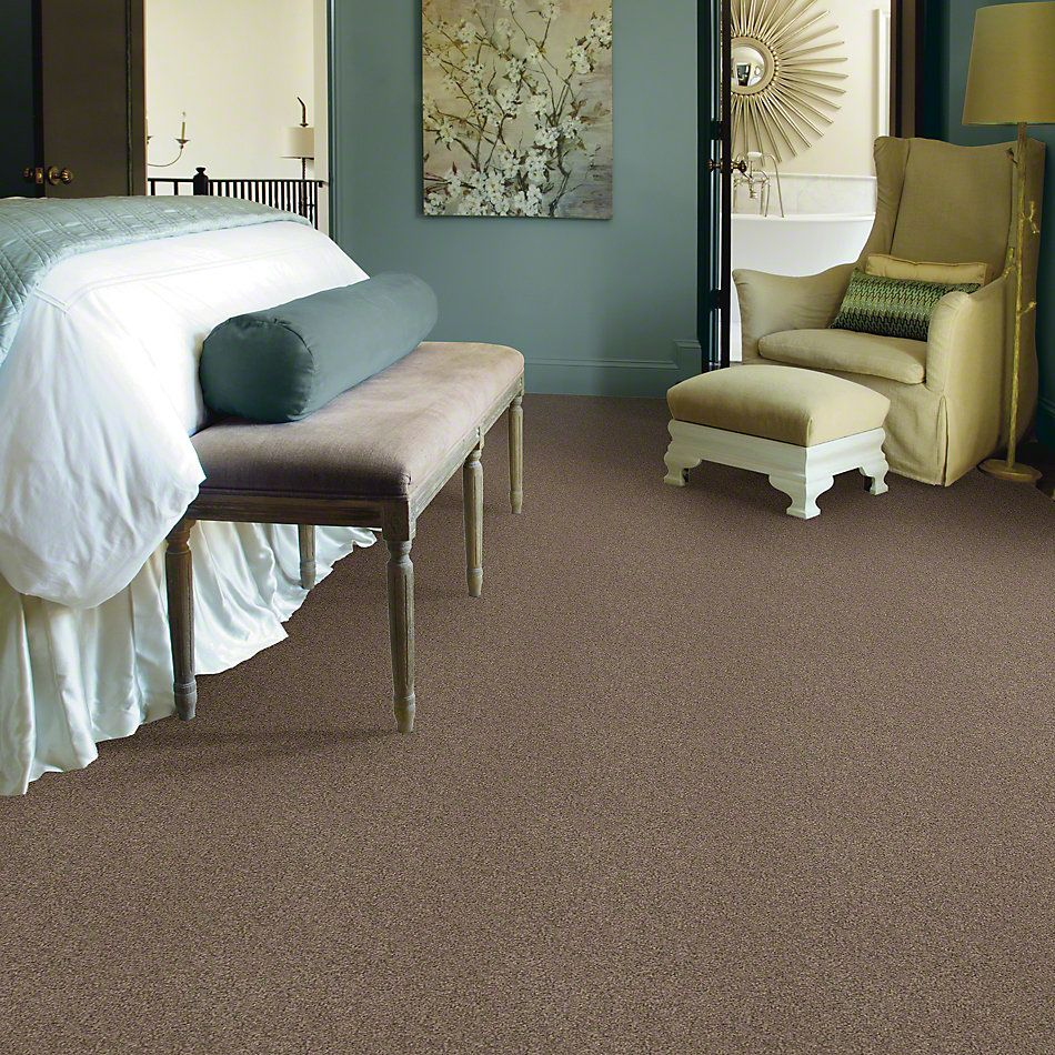 Shaw Floors Value Collections Gold Texture Net Iced Coffee 00723_E9325
