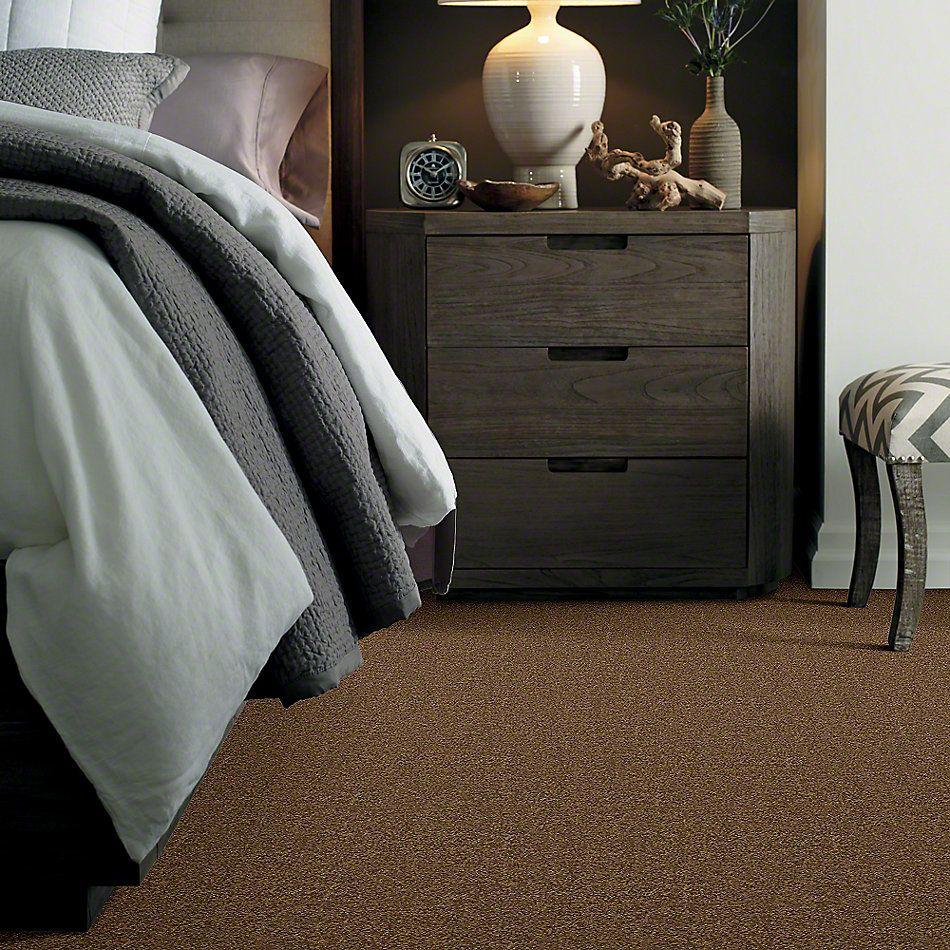 Shaw Floors Caress By Shaw Cashmere Classic II Tobacco Leaf 00723_CCS69