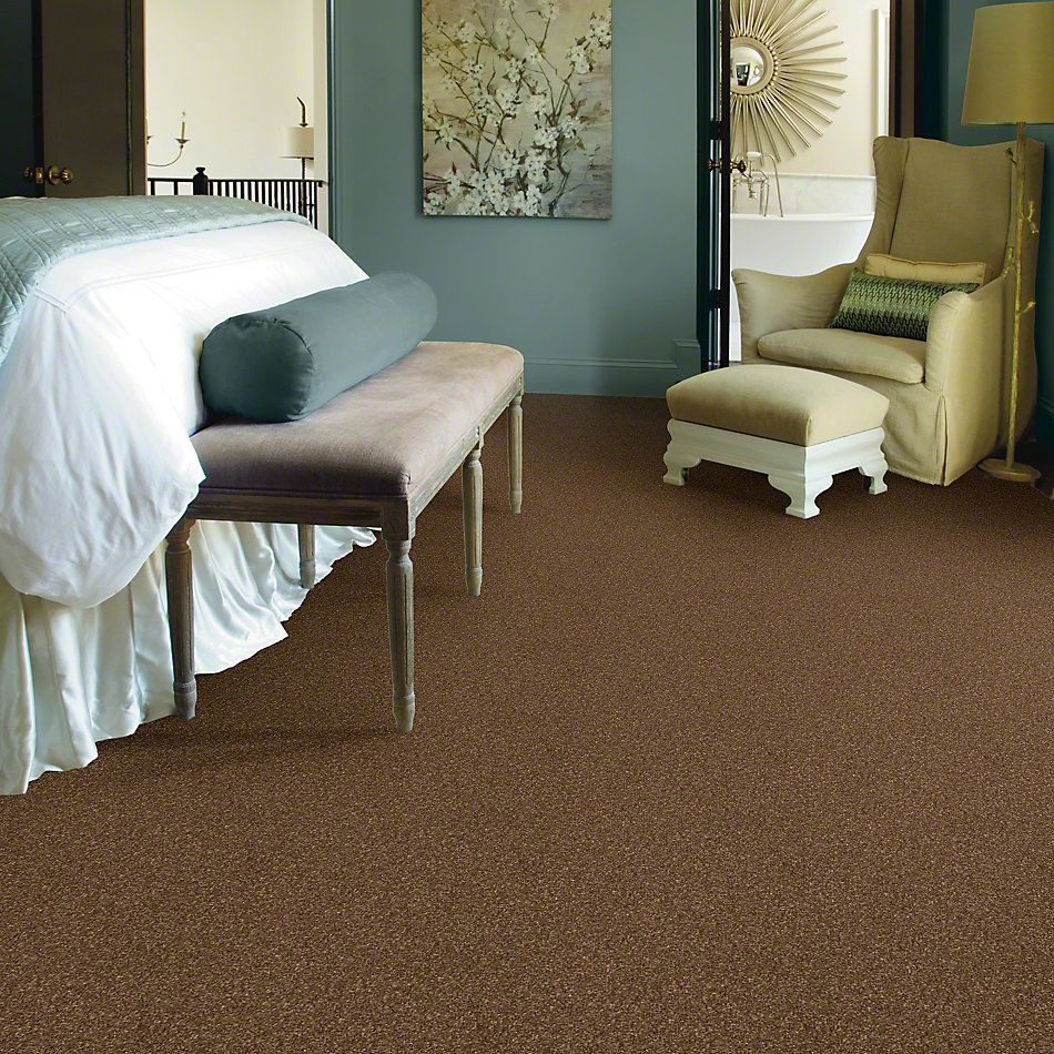 Shaw Floors Caress By Shaw Cashmere Classic III Tobacco Leaf 00723_CCS70