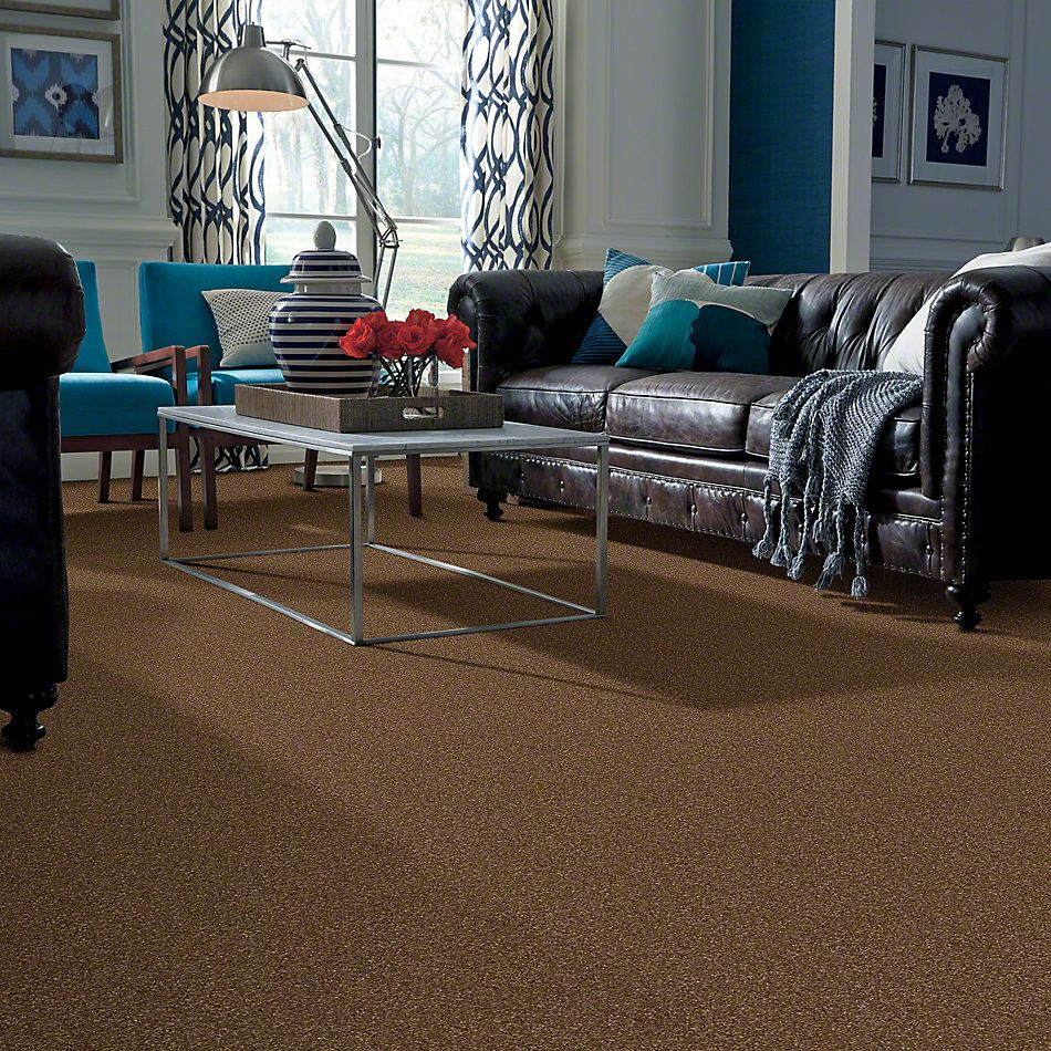 Shaw Floors Caress By Shaw Cashmere Classic Iv Tobacco Leaf 00723_CCS71
