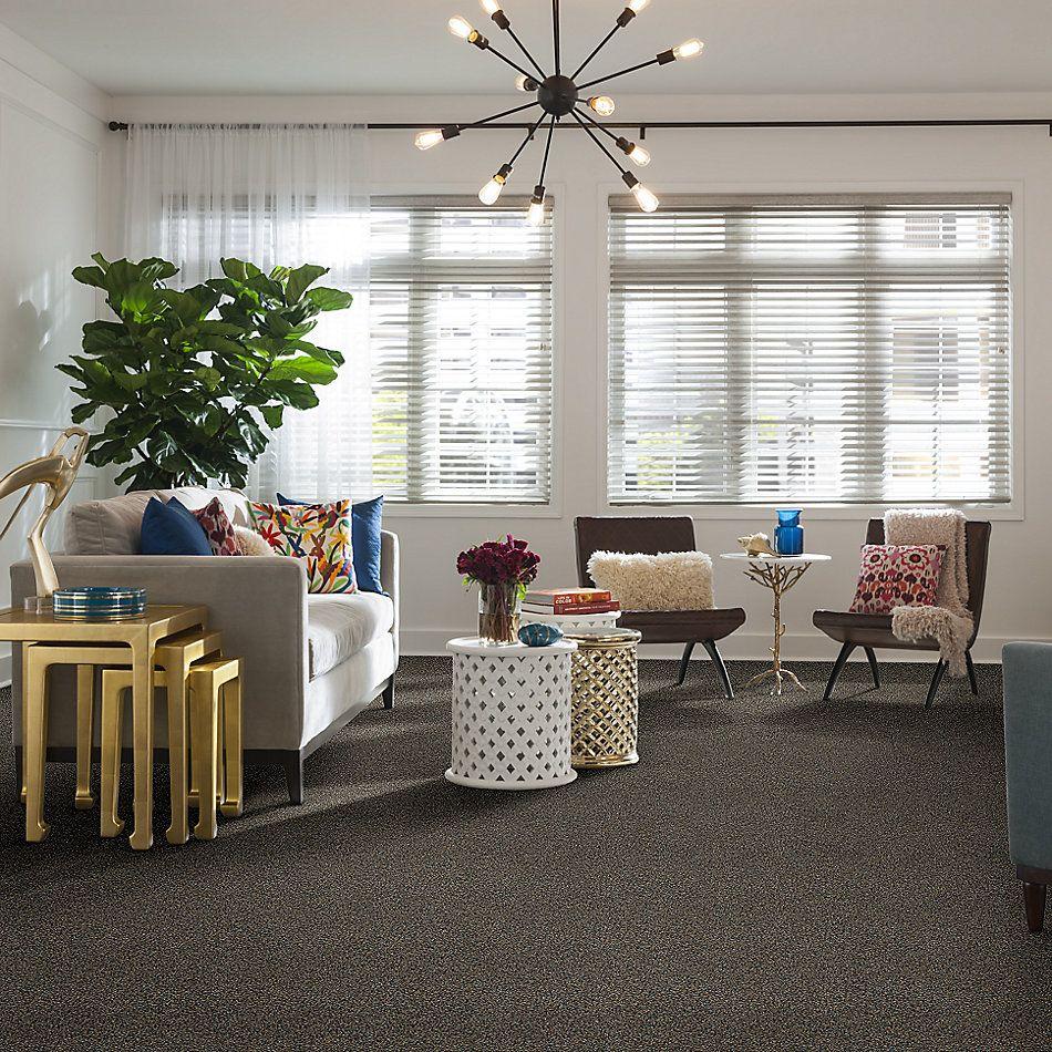 Shaw Floors 300sl 15′ Serenity 00723_EA764
